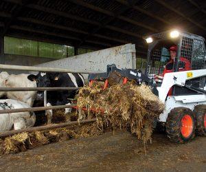 S70 Bobcat Kompaktlader Anbaugeraet Landwirtschaftsgreifer First